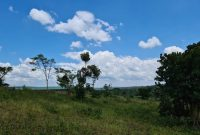 10 acres of land for sale in Mityana at 33m per acre