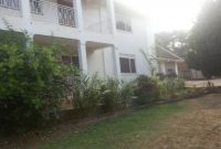 House for rent in Muyenga