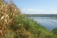 land for sale on the banks of the nile Jinja