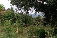 Land for sale on Entebbe Road