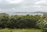 7 acres of Land for sale in Munyonyo