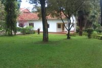 House for sale in Bugolobi on 60 decimals 650,000 usd