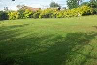 12 acres of Land for sale in Namugongo 300m per acre