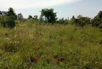 23 acres of land for sale in Kiyunga Mukono Satellite at 25m per acre