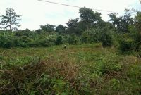 32 acres of Land for sale in Ntenjeru 14m per acre