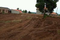 Half acre of land for sale in Kira at 220m