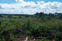2 acres of Land for sale in Katabi Entebbe
