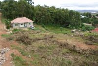 land for sale in Namugongo 100x100 ft at 100m