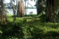 Waterfront land for sale in Bugiri 90 acres