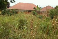 45x75ft plot of land for sale in Mulawa Kira at 40m