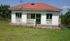 1 acre Farmland with 3 bedroom house for sale in Nakasajja 80m