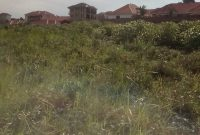 11 acres of land for sale in Mbalwa Namugongo at 300m per acre