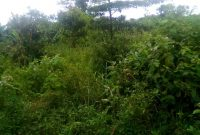 Acres of land for sale in Ngeta Lira city from 17m an acre
