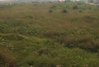 17 acres of commercial land for sale in Namanve at 200m each