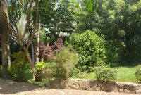 This is 50 decimals plot of land for sale in Kololo at 680,000 USD