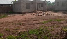 2 bedroom houses for sale in Bukerere at 20m each