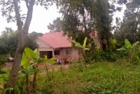 30 decimals of land for sale in Kyanja Komamboga at 300m