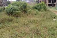 This is a 50 decimal plot for sale in Kira at 380m