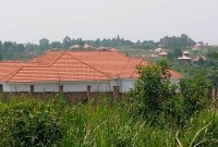 2 acres for sale in Kigoogwa Matugga at 75m each
