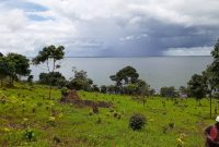 244 acres of lake shore land for sale in Nyimu Kisigula at 15m each