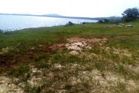 21 acres of Land on Mbeya Island for sale at 20m per acre