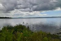 20 acres for sale in Mpenja Mukono at 200m per acre
