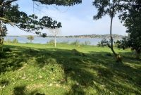 2 acres touching lake Victoria for sale at 100m each