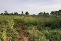 180 acres of lake view land for sale in Kasanje 280m each