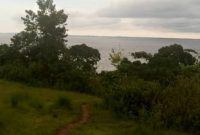 70 acres Lake view land for sale in Buikwe at 15m each