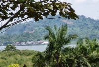 150 acres for sale on Bussi Island at 10m each