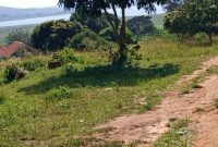 35 decimals lake view plot for sale in Bweya Kajjansi at 390m