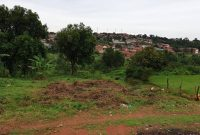 2 acres for sale in Kireka 600m each