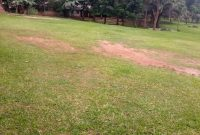 1 acre of land for sale in Kabalagala at 600,000 USD