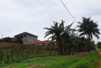 50x100ft plot of land for sale in Kira at 55m