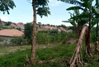 20 decimals plot of land for sale in Kyanja at 250m