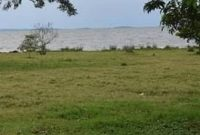 19 acres of land for sale in Garuga shores at These are 19 acres of land for sale in Garuga near Pearl Marina estate touching the shores of the Lake at 500m shillings per acre