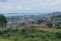 6 acres of lake view land for sale in Kitende Kitovu at 290m each