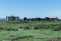50x100ft plots of land for sale in Nkumba at 55m each