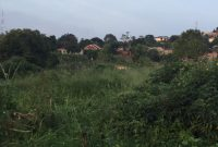 4 acres for sale in Seguku LUbowa at 800m per acre