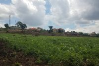 2 acres of land for sale in Kira Mulawa at 600m each