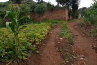 50x100ft plot of land for sale in Namugongo at 38m