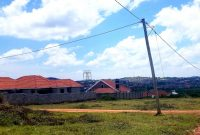 50x100ft plot of land for sale in Kira Nsasa at 50m