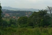 6 acres of lake view land for sale in Bwebajja at 320m