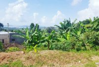 17 acres of land for sale in Nakifuma 13m each