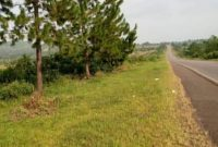 123 acres of land for sale in Busunju at 28m per acre