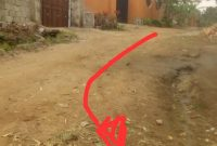 100x100ft plot of land for sale in Mukono Municipality at 80m