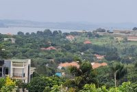 10.8 acres of lake view land for sale in Bwebajja at 350m per acre