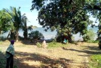 6 acre beach for sale in Bwerenga at 2.6 billion shillings