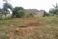 100x100ft plot of land for sale in Kira Mulawa at 180m