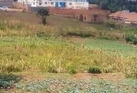 5 acres of commercial land for sale in Nantabulirwa Seeta at 450m each